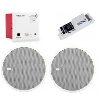 """Podtynkowy odbiornik Bluetooth z głośnikami 2,5"""""""