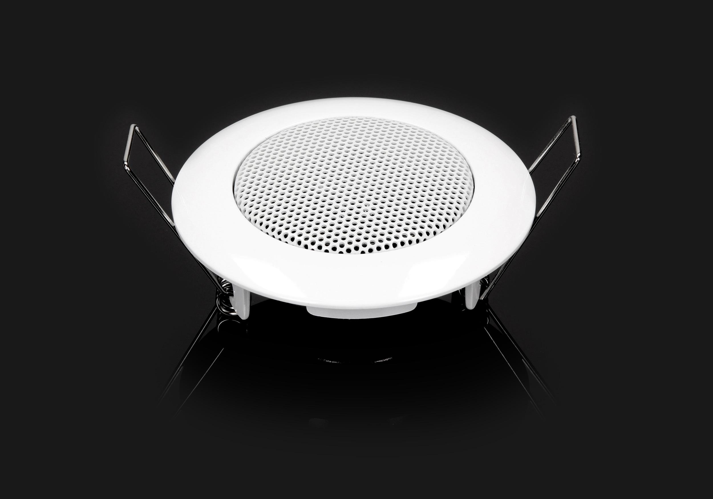 głośnik do montażu w suficie podwieszanym Eis Sound Basic